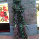 Treeman.